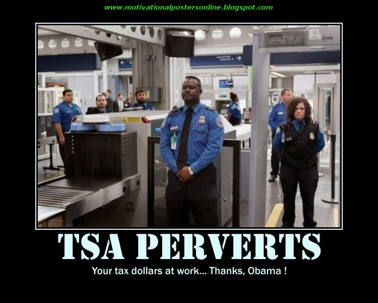 Furthermore, these procedures provide sexual predators under the employ of  the TSA with an open platform to openly rape and molest innocent men, ...