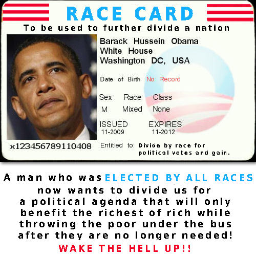 https://pumabydesign001.files.wordpress.com/2012/02/obama-race-card-20121.jpg