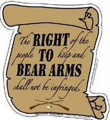 Gun Regulation - Right to Bear Arms Constitution