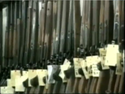 Screenshot of Gun Confiscated by Australian Government.