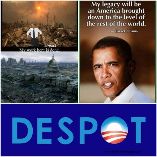Obsma dismantling USA 002