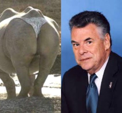 RINO Peter King