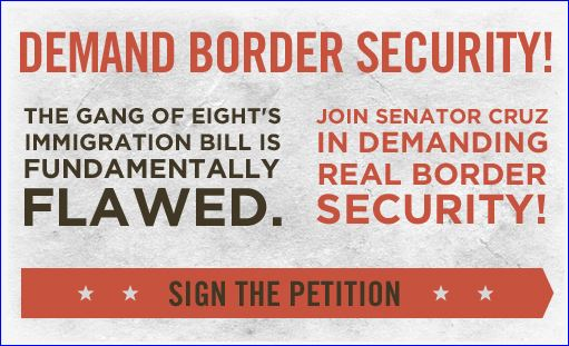 Ted Cruz border security petition screenshot