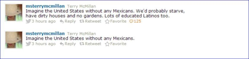 terry mcmillan tweet about Mexicans