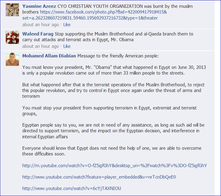 Egyptians protest on Obamas FB Page 008
