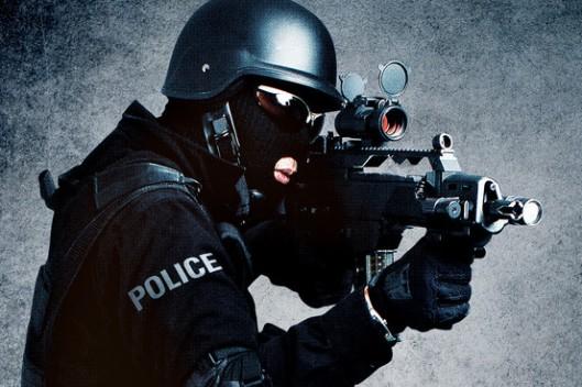 warrior cop