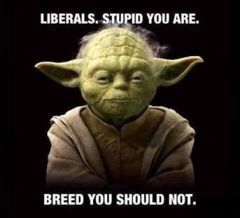 Stupid Liberals should not breed