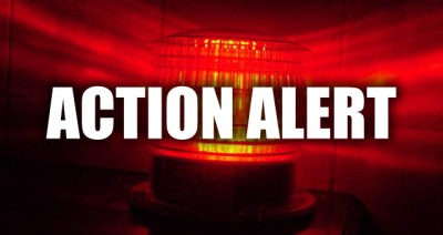Action Alert 002