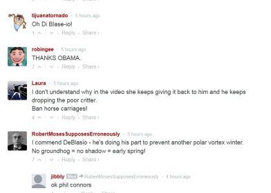 screenshot comments re de blasio murder of groundhog Chuck aka Charlotte 002 gothamist