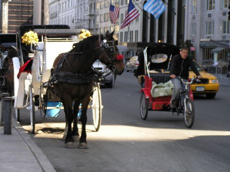 Central Park horse carriage and pedicab photo by urban lisa flickr creative commons