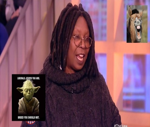 screenshot whoopee goldberg the view stupid liberal jackass 750 x 635