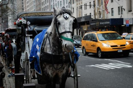 Central Park horse carriage - photo courtesy of hey tiffany!, Flickr (CC BY 2.0)