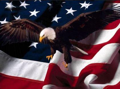 American Flag and bald eagle