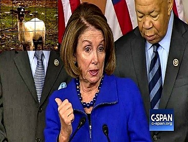 screenshot-nancy-pelosi-scapegoat-press-conference-002-goat-367-x-278-compressed