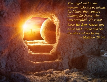 He is Risen Matthew 28 5 6 439x337