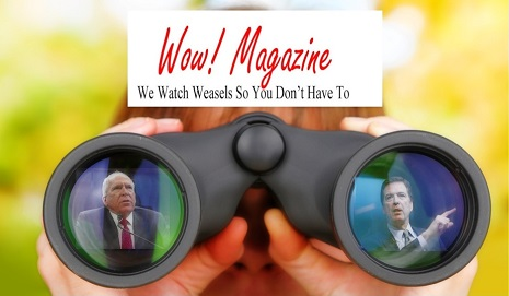 Weasel Watching John Brennan and James Comey (Derivative) - Orig. photo of woman with binoculars from Shutterstock
